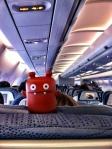 Nandy on Plane